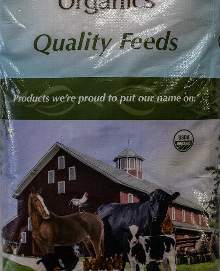 GO Organic Layer