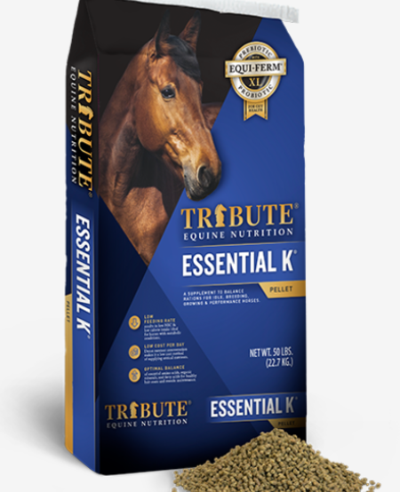 Essential K