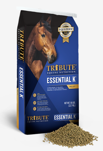 Tribute Essential K