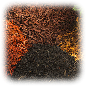 Variety of Mulches