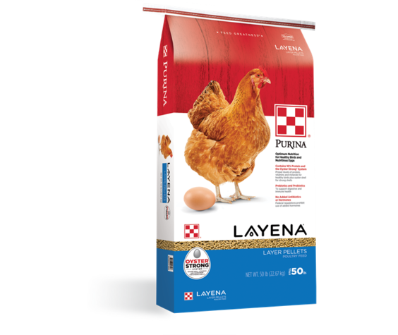 Purina Layena Pellets 16%