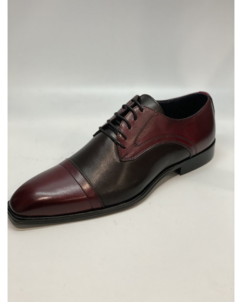Duca Two Tone Cap Toe Leather Shoe