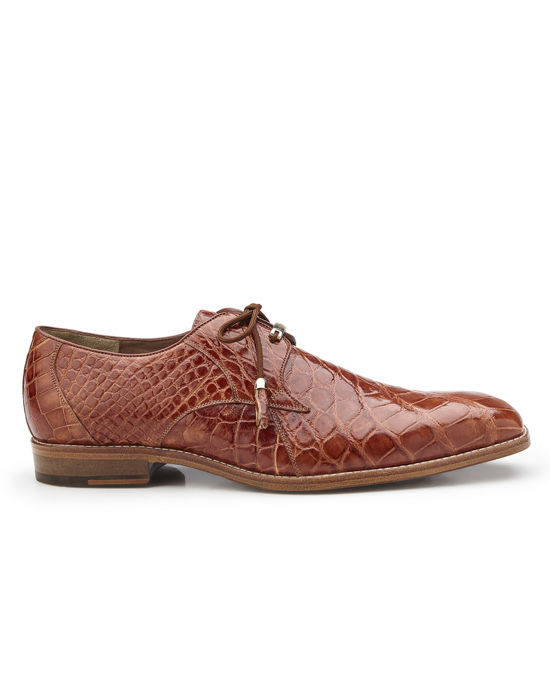 Belvedere Alligator Shoe (Lago)