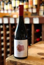 2016 Benedek Pinot Noir - Matra, Hungary