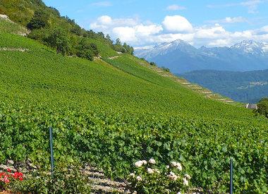 Jura & Savoie