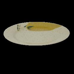 Melamine Dinne Plate - 11INCH