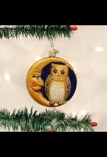 Owl In Moon