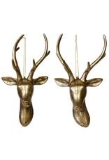 """10"""" Deer Head w/ Antler"""