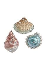 "3.25"" Resin Seashell Orn"