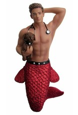 Dr. Pet-A-Vet Merman Ornament
