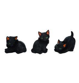 Resin Black Cat w/Feathers Figure (3 Asstd)