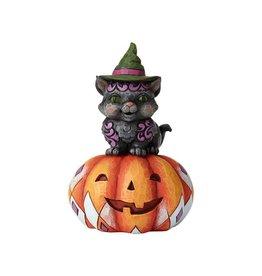 Jim Shore - Pint Sized Black Cat on Pumpkin