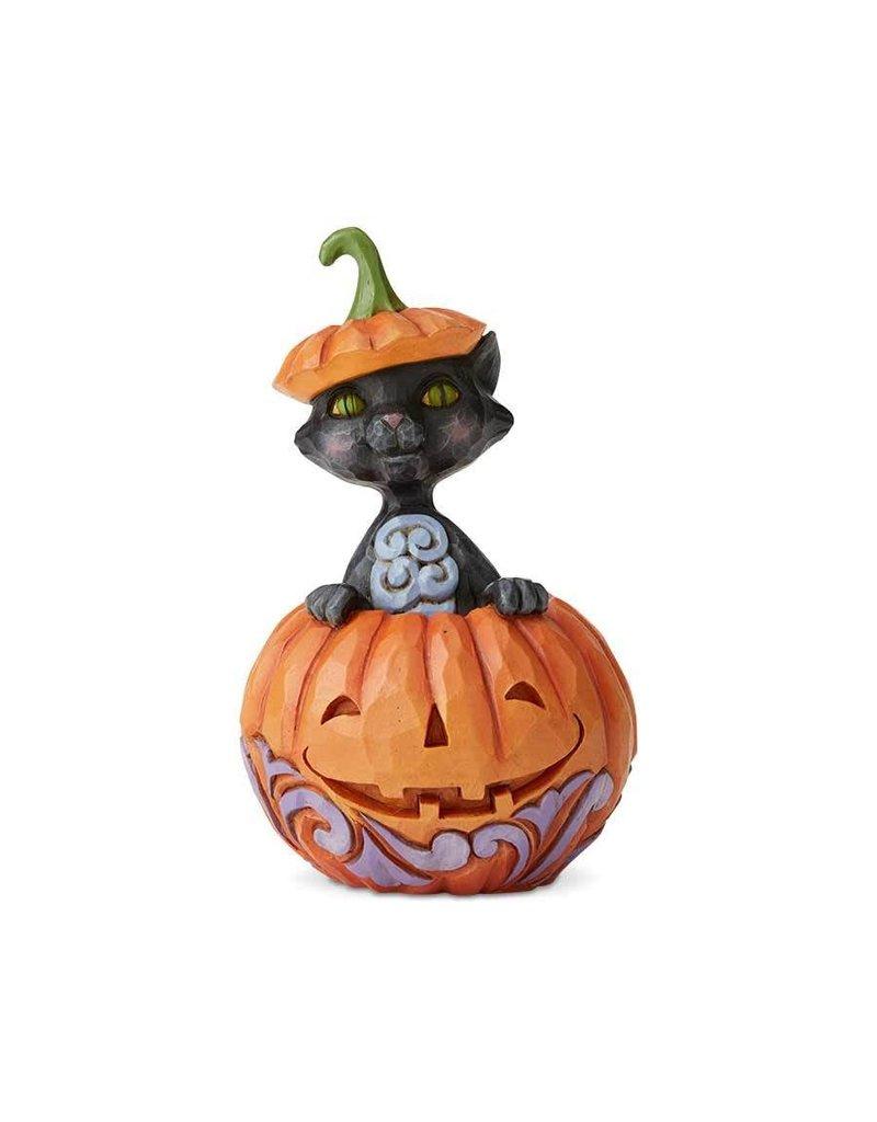 Jim Shore - Cat In Pumpkin Mini