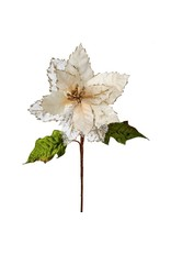 "25"" Regal Poinsettia Stem Ivory"