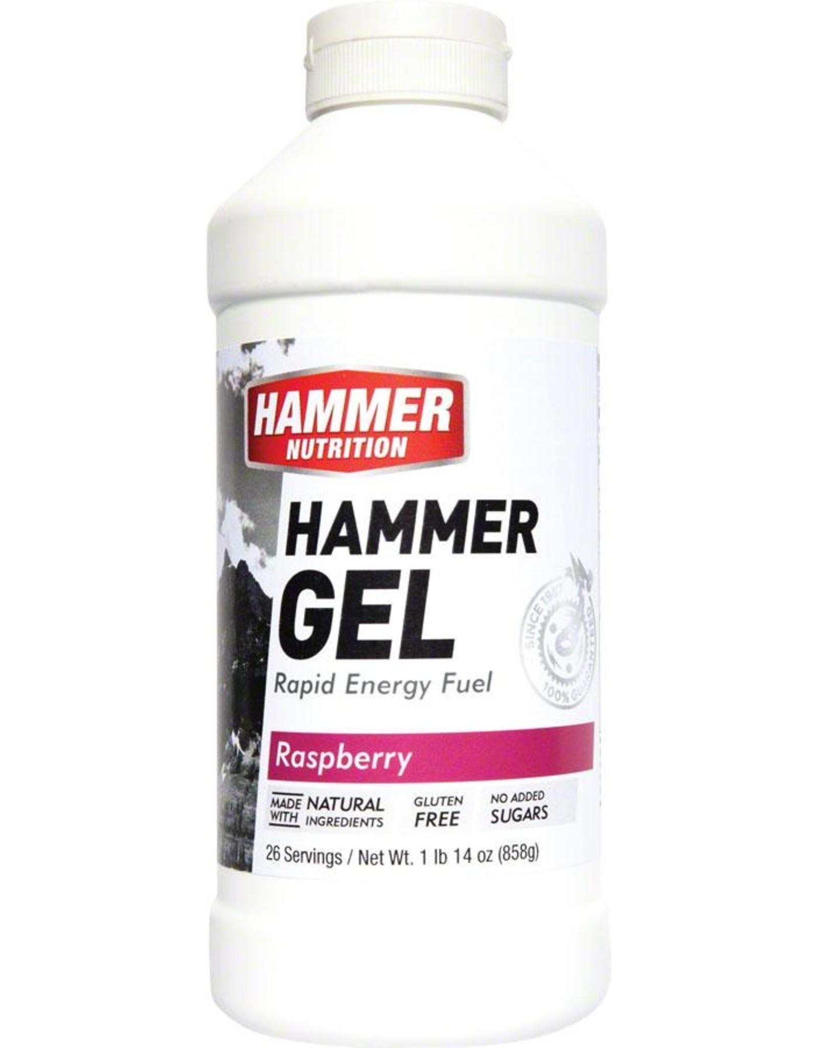 Hammer Nutrition Hammer Gel: Raspberry 20oz