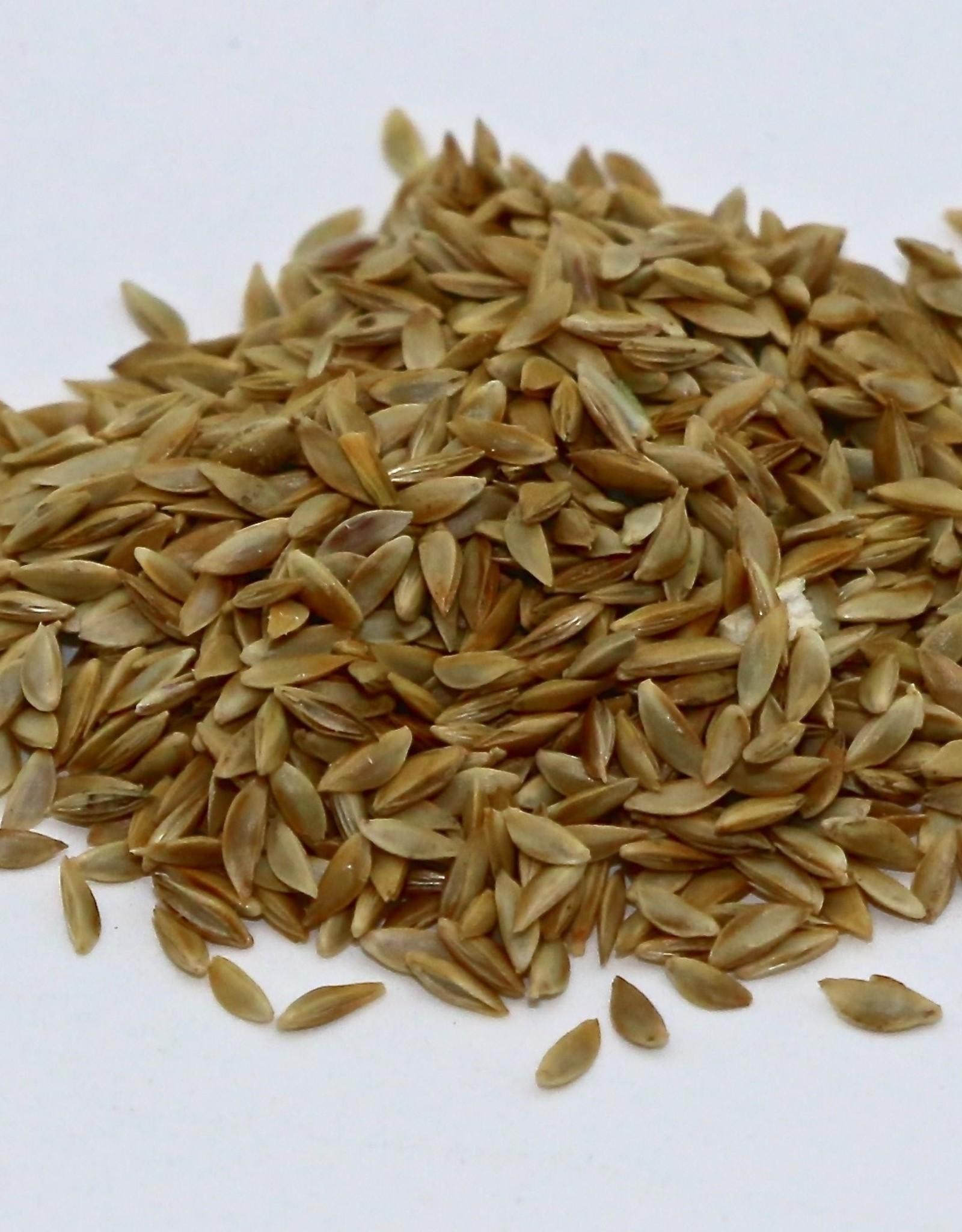 Raw Unhulled Bermuda Grass Seeds, 50 lb. Bag 50% more