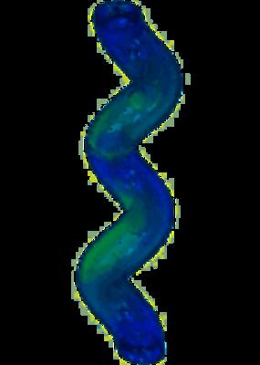 Kong Kong Treat Spiral