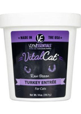 Vital Essentials Vital Essentials Frozen Tub Cat 14oz