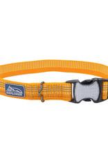 Coastal Coastal K9 Explorer Bright Dog Collar