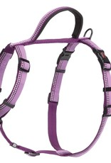 The Company of Animals Halti Walking Harness