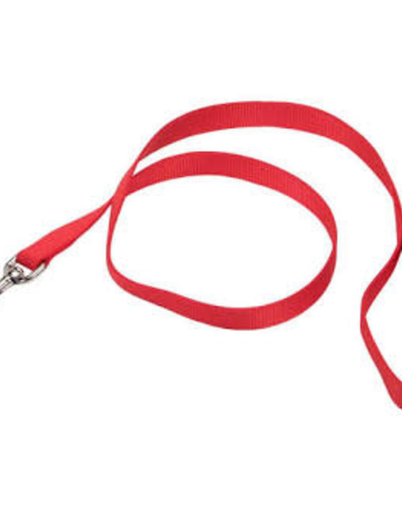 "Coastal CP 3/8"" Training Lead Red"
