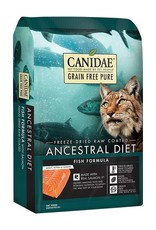 Canidae Canidae Cat Pure Ancestral Fish