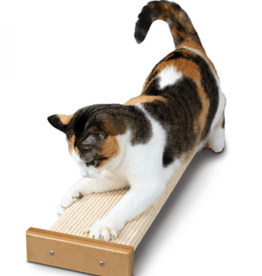 Star Marks Smart Cat Bootsies Combo Scratcher