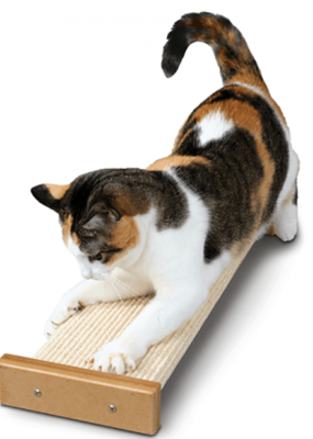 Star Marks Smart Cat Bootsies Combo Scratcher