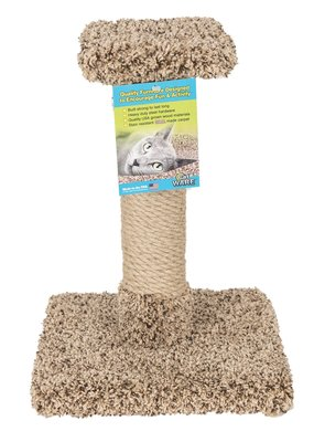 Ware Ware Kitty Cactus w/Sisal & Top 18""