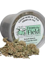 From the Field From the Field Buds in a Tub 0.5oz