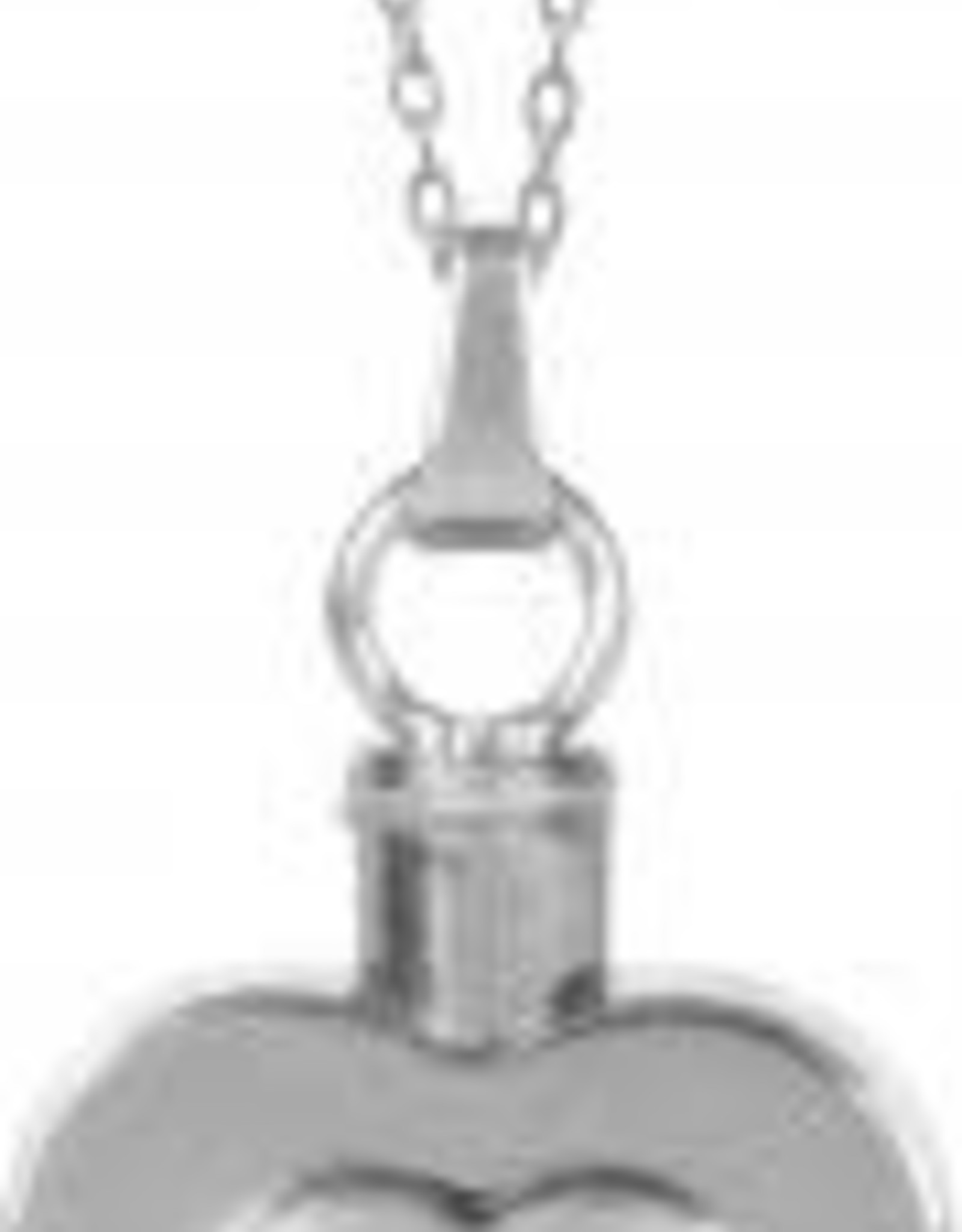N/A Ash Pendant Heart Necklace AS