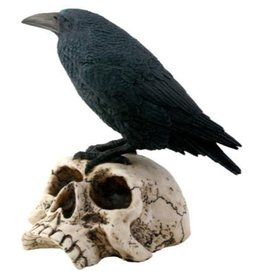 Pacific Trading Statue Raven on Skull PG