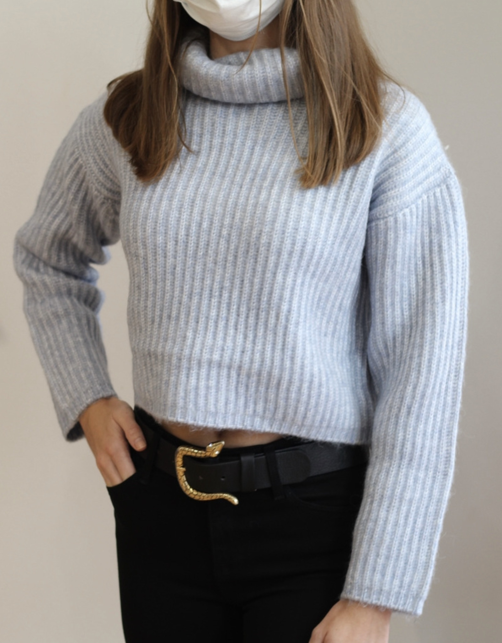 Thakoon Cropped Ribbed Turtleneck Sweater