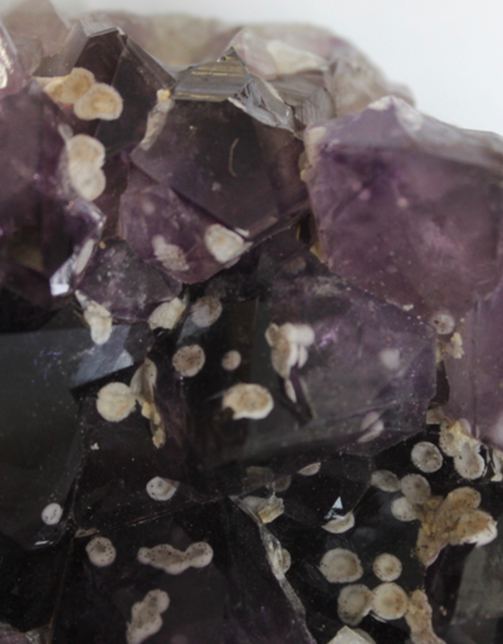 Amethyst Cluster with Calcite points ~ Brazil