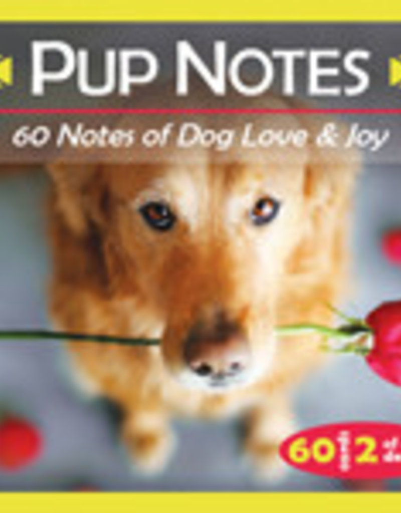 Pup Notes Oracles