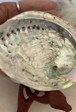 Abalone Shell ~ Large
