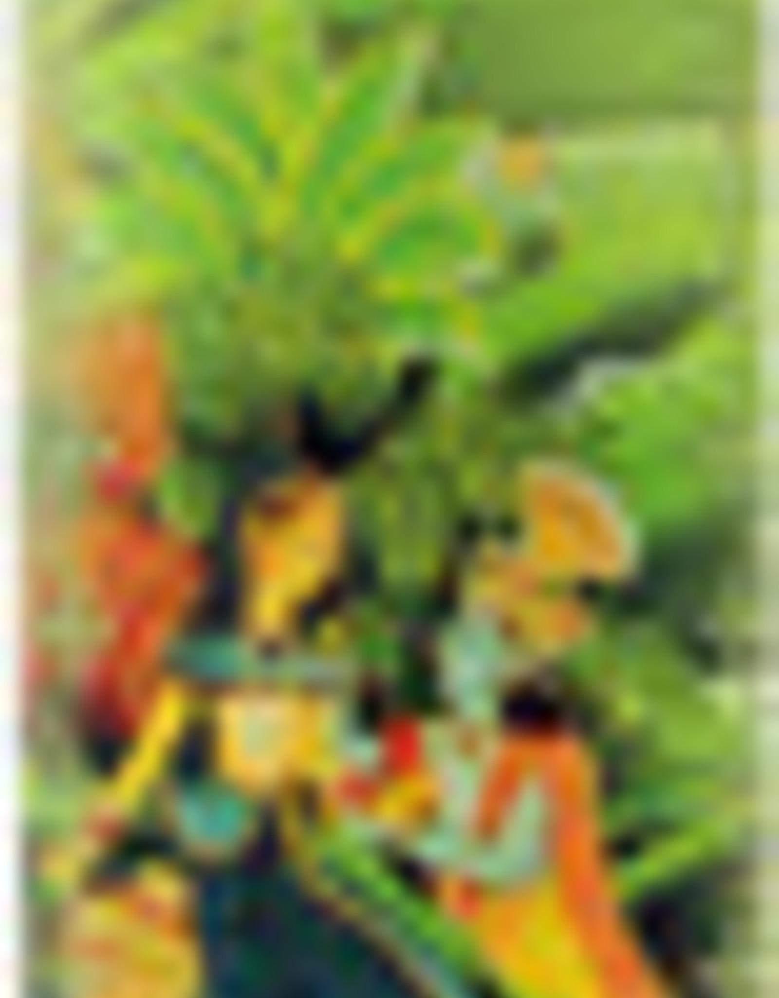 Prabhuji's Incense R-Y