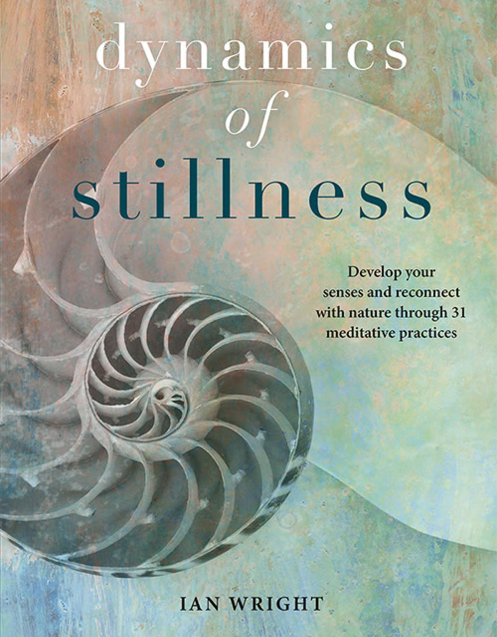 Dynamics of Stillness