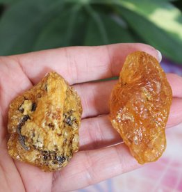 Kaurilite Amber ~ New Zealand  **RARE**