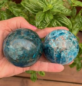 Apatite Sphere for wisdom and direction