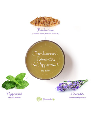 Homesteader.life Frankincense, Lavender, and Peppermint Lip Balm