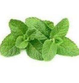 Vaporifics Sweet Mint