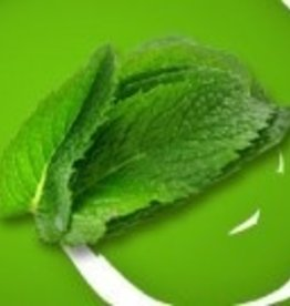 Vaporifics Wintergreen