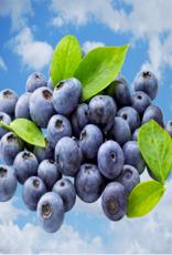 Vaporifics Berry Cloudy
