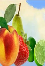 Vaporifics Spring Peaches