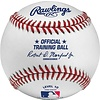 Rawlings Rawlings Training Ball