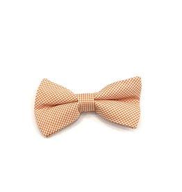 Bowen Tie Oyster Point Orange