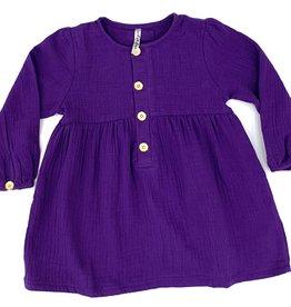 Velvet Fawn Purple And Gold Muslin Dress