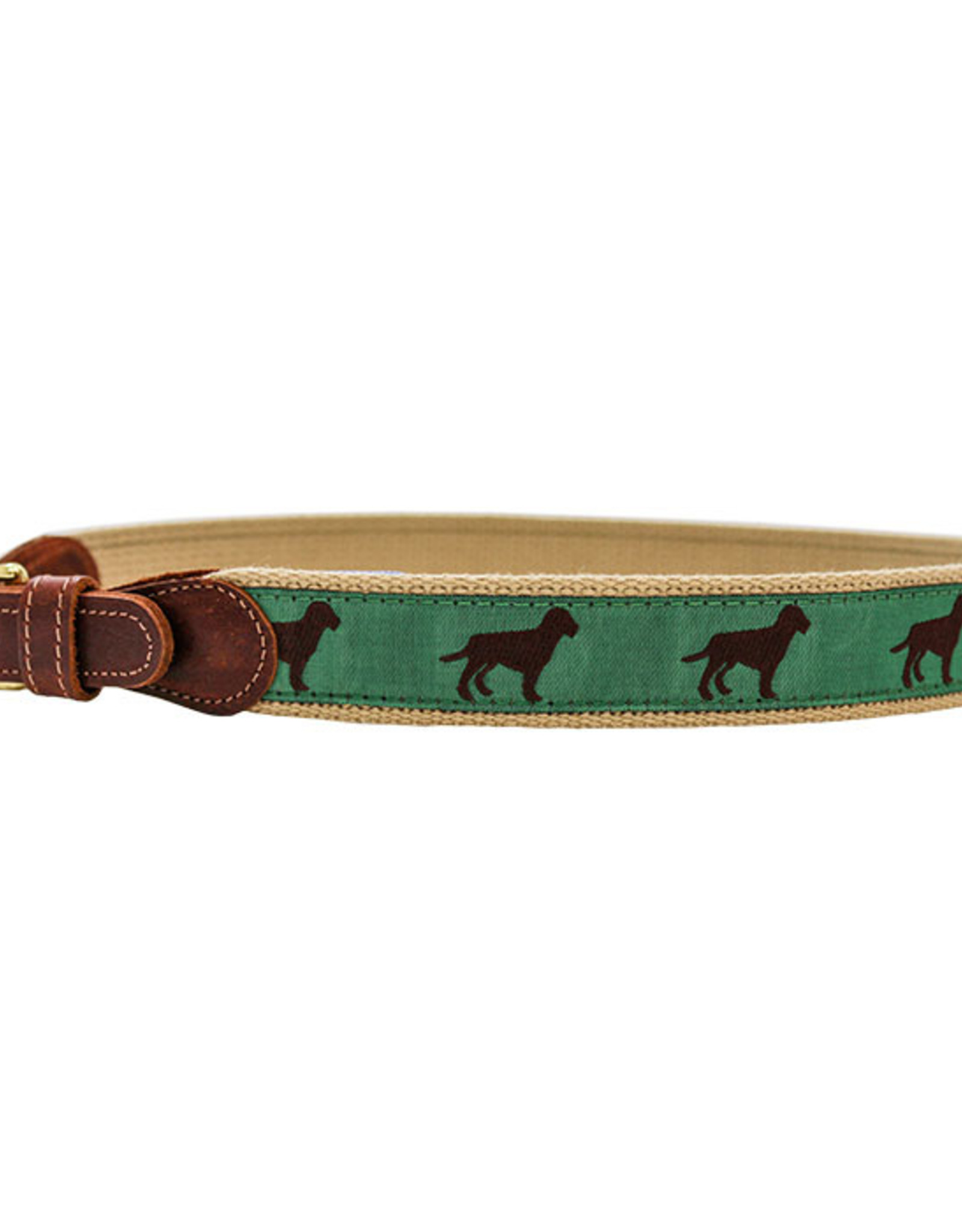 The Bailey Boys Chocolate Dog Belt