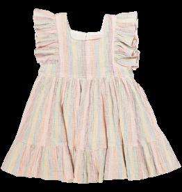 Pink Chicken Elsie Dress Rainbow